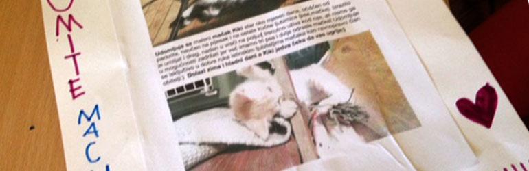 Volim stranice za upoznavanje mačaka app asian uk