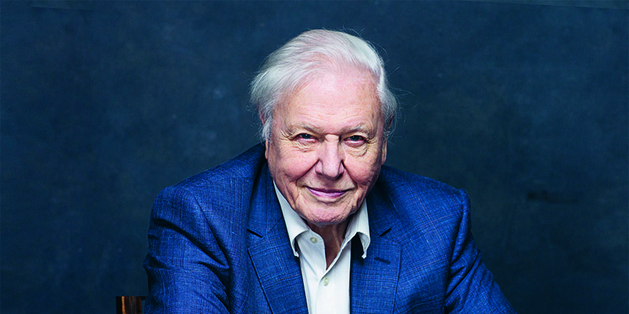 Sir David Attenborough © BBC